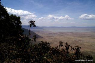 EA_Ngorongoro Crater